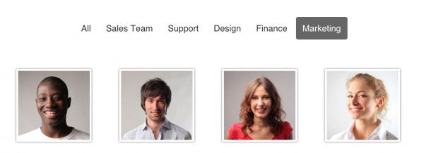 Team Showcase - Wordpress Plugin - 5